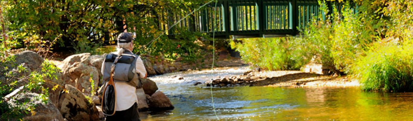 Fly Fishing Tips for Estes Park, Colorado