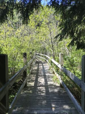 Bridge at Leelanau State Park