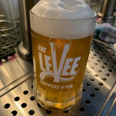 Levee Brewery- Pint
