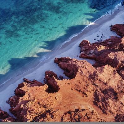 Koolaman Cape Levique