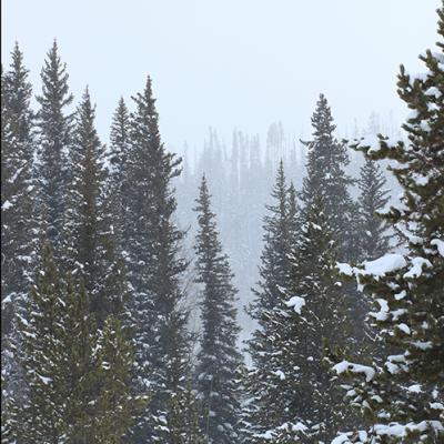 Steamboat Springs is a winter wonderland