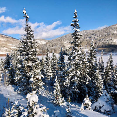 Pearl Lake State Park is a winter activity paradise