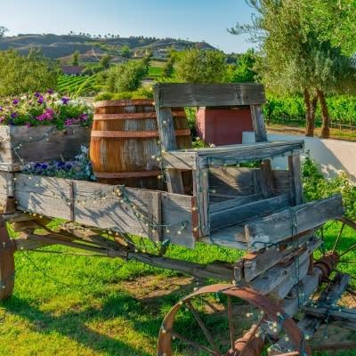 Temecula Valley Outdoor Spaces