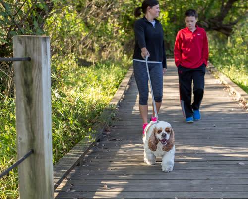 Wildwood Park Easy Hike