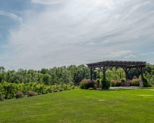 The wedding canopy overlooking the vineyard
