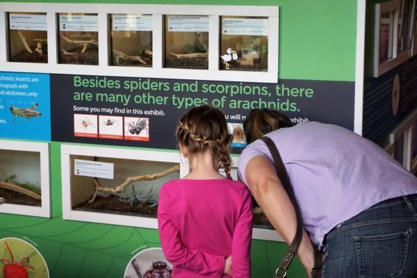 Family looking at exhibit at River Legacy Living Science Center