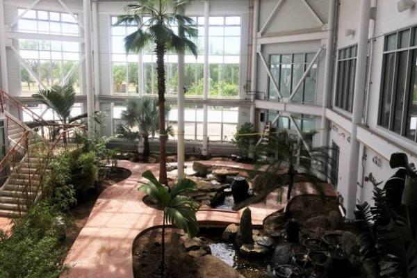 Botanic Gardens New