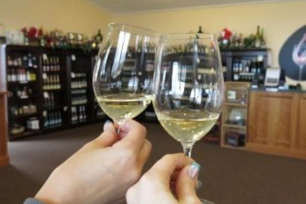 experience flx wine tour 18 0
