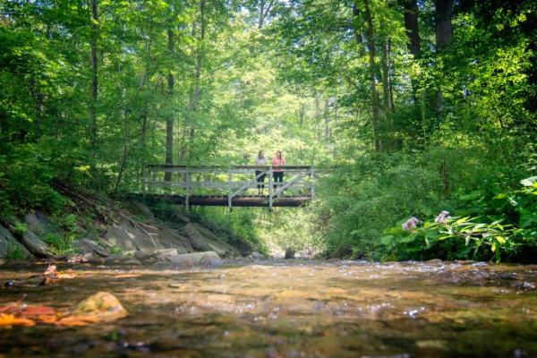 finger lakes trail stu gallagher