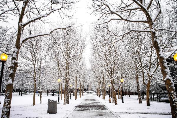 Winter in Centerway