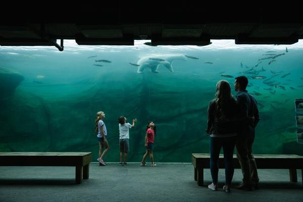 Polar Frontier - Columbus Zoo