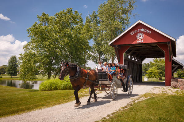 Horse and Carriage by Essenhaus Bridge
