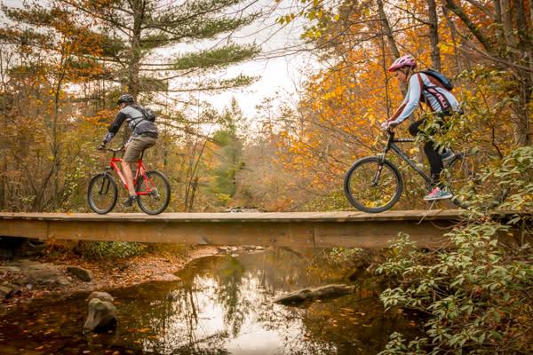 Fall Biking2