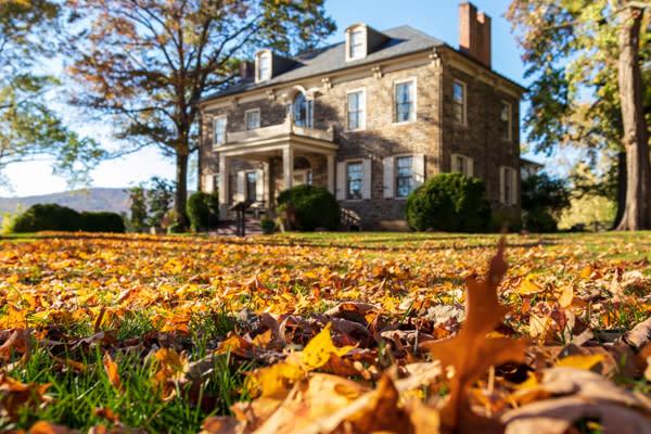 Fort Hunter Fall Leaves
