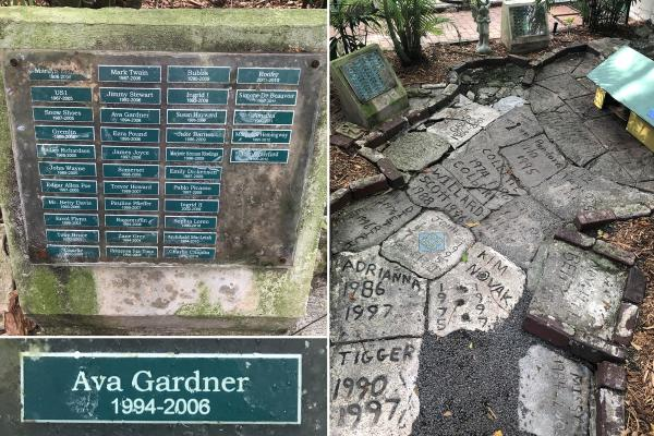 Gravestones with the names of cats and dates inscribed at the Hemingway Estate in Key West