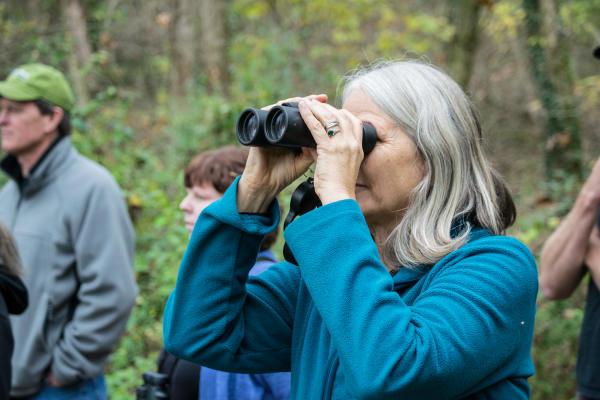 Woman Looking Through Binoculars At The Ijams Nature Center