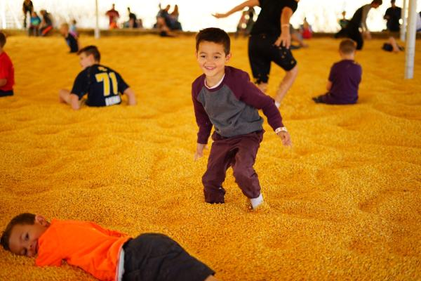 Kids in a corn seed pit