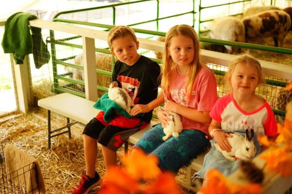 Kids holding bunnies
