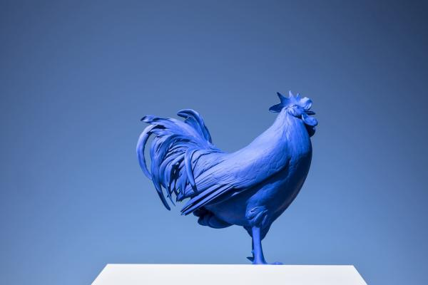 Sculpture of giant blue rooster