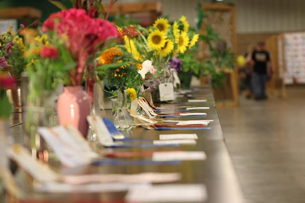 County Fair Flowers