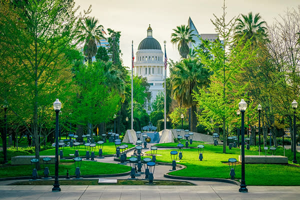 capitol building in sacramento with trees in the foreground