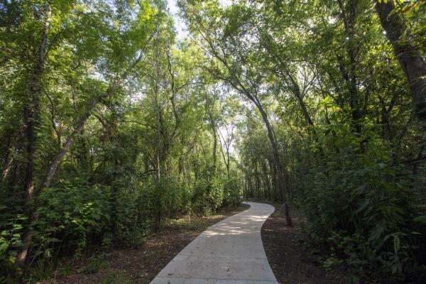Paved walking trail at Cullinan Park.