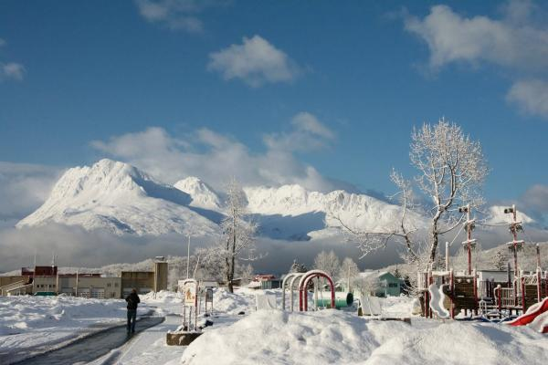snow capped mountains and a park in a snowy downtown