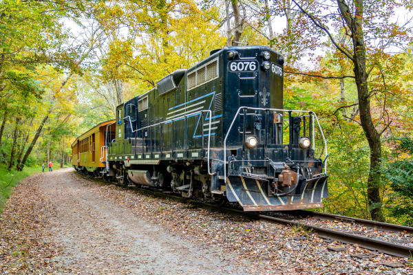 A mighty diesel engine rides the rails through changing fall foliage.