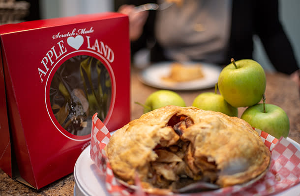 Apple Land Station pie 610 by 400