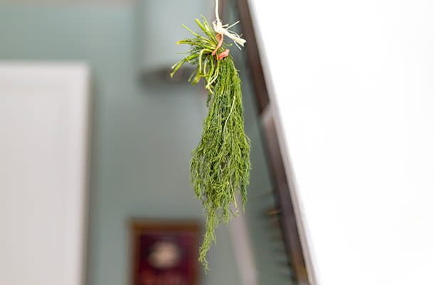 Drying Dill 610 by 400