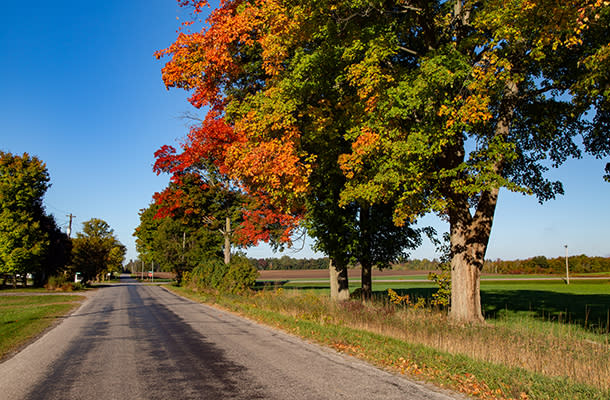 Fall Country Road 610 by 400