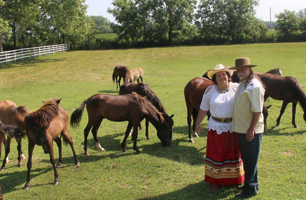 Spirit Horses 610 by 400