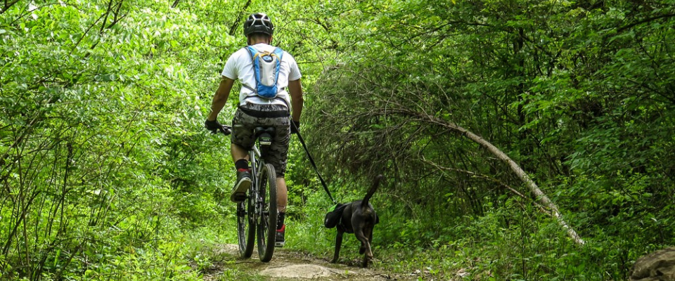 man biking with his dog on a leash in William Hastie Natural Area