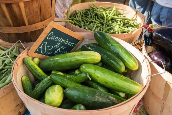 Cucumbers in a basket at New Albany Farmers Market