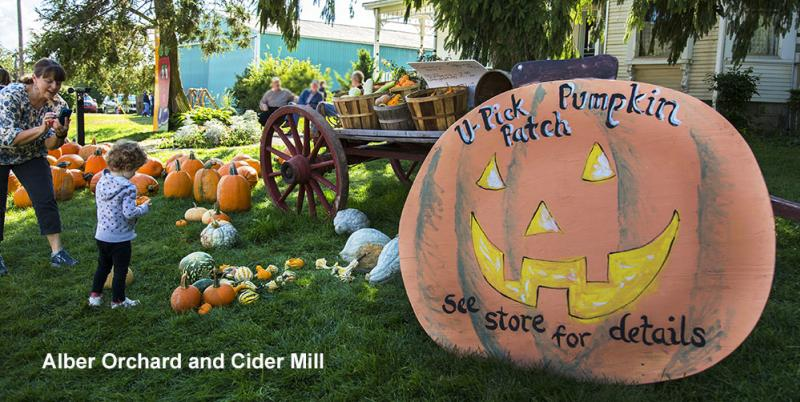 Alber Orchard and Cider Mill
