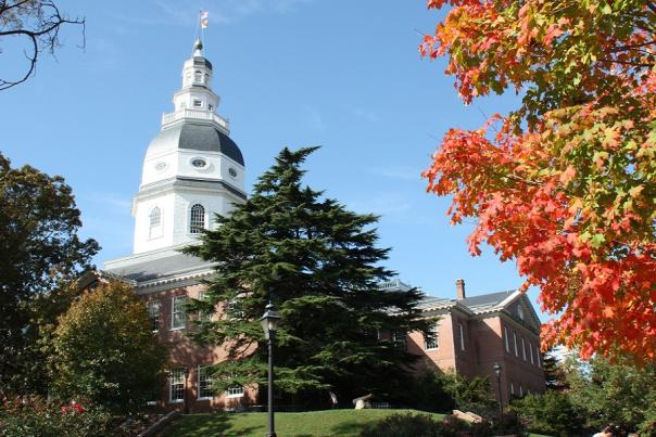 8 Ways to Explore Annapolis this November