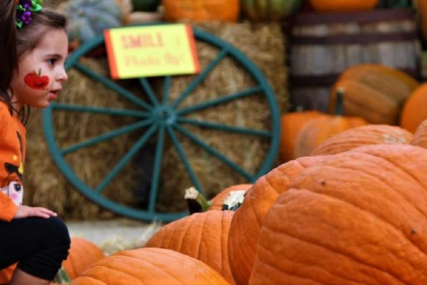 Eight not-to-miss Fall Festivals in Annapolis and Anne Arundel County, Maryland