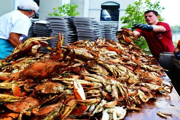 Recap Annapolis' Crab-fastic Feast