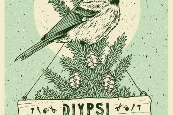 Diypsi 2018
