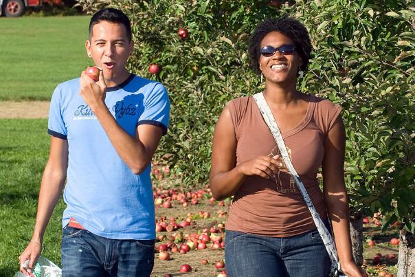 Fall Fun Wiard's Orchard