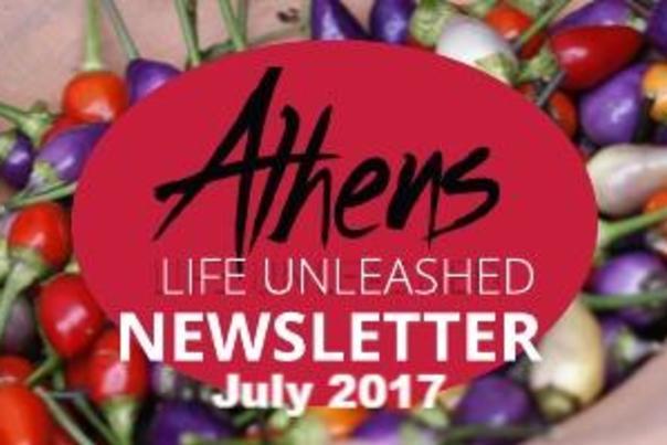 cvb-newsletter-july-2017