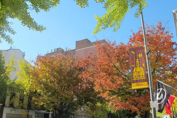 Fall Downtown Athens