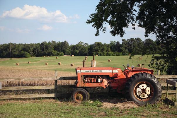Steed's Dairy Farm