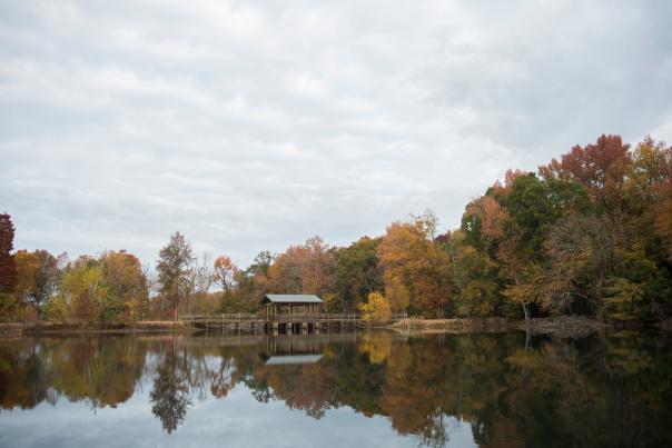 Fall at Brick Pond Park