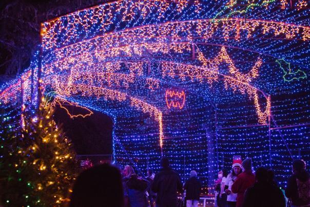 Austin Trail of Lights. Credit Dear Wesleyann Photography.