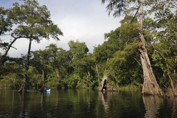 Neches River Rally Canoe Trip