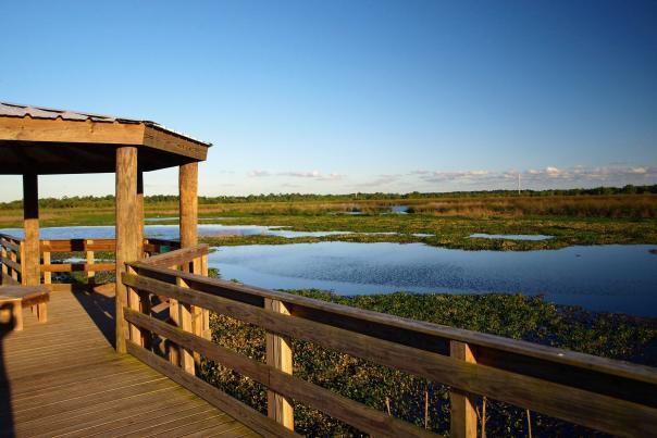 Cattail Marsh boardwalk in Beaumont, Texas