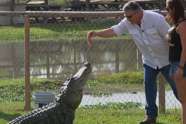 Texas Country Reporter Gator Country