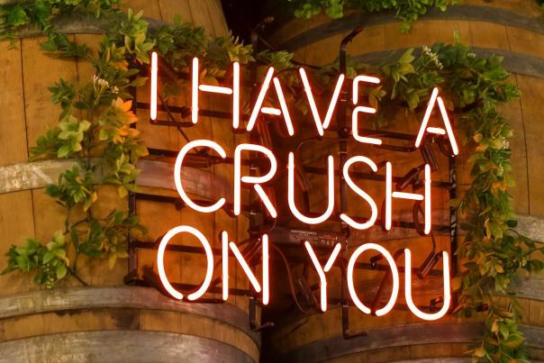I have a crush on you sign