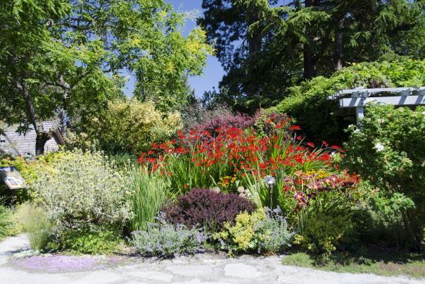 Glamorous Gardens to Visit while in Bellevue